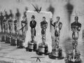 Several Oscar aware statuettes lined up