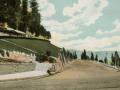 postcard image of Elysian park