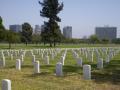 LA National Cemetery