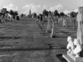 Gravestones at New Calvary Cemetery