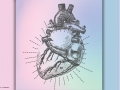 illustration of a heart on pastel ground