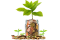 a jar with coins and a growing plant